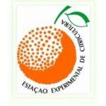AAAclassificados - EECB