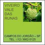 vale-das-runas-1