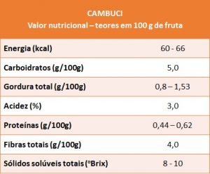 cambuci - VN