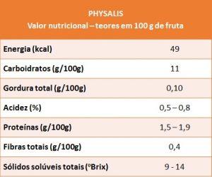 physalis - VN