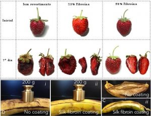 seda-protege-frutas-2